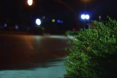 Luces de la ciudad de la noche en el parque foto de archivo libre de regalías