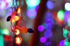 Luces de la decoración del festival Fotos de archivo