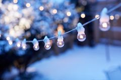 Luces de la fiesta de Navidad en un invernadero Fotos de archivo