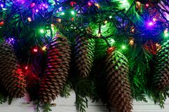 Luces de la guirnalda de la Navidad y conos del pino en ramas del abeto stylish Fotos de archivo libres de regalías