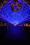 Luces de la Navidad azules en Boston Fotografía de archivo