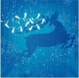 Luces de la Navidad blanca del reno en fondo azul con las estrellas Imagen de archivo