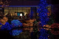 Luces de la Navidad coloridas Fotografía de archivo