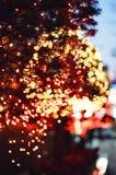 Luces de la Navidad de los árboles de la ciudad Fotos de archivo libres de regalías