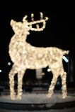 Luces de la Navidad del reno Imágenes de archivo libres de regalías