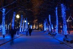 Luces de la Navidad en árboles en parque del invierno Fotos de archivo libres de regalías