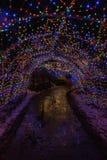 Luces de la Navidad en Duluth, Minnesota durante la estación del invierno en las orillas del lago Superior imágenes de archivo libres de regalías