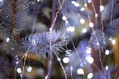 Luces de la Navidad en el primer blanco del árbol de navidad imagenes de archivo