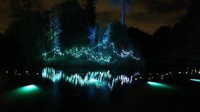 Luces de la Navidad en los jardines reales de Kew, Londres, Reino Unido almacen de video
