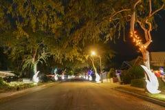 Luces de la Navidad hermosas en vecindad superior del rancho de Hastings Imagen de archivo libre de regalías