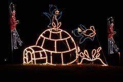 Luces de la Navidad - pingüinos e iglú Imágenes de archivo libres de regalías