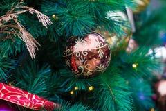Luces de la Navidad que cuelgan en árbol imágenes de archivo libres de regalías