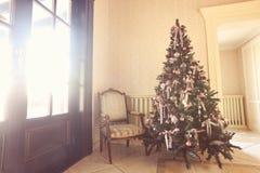 Luces de la Navidad que cuelgan en un árbol en un rosa del amarillo del sitio del restaurante Fotos de archivo libres de regalías