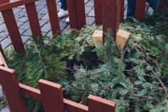 Luces de la Navidad que cuelgan en un árbol, rama de árbol de navidad fotos de archivo