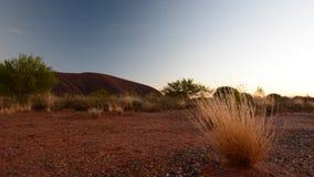 Luces de la salida del sol en Uluru Parque nacional de Uluru - de Kata Tjuta Territorio del Norte australia almacen de metraje de vídeo