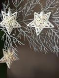 Luces de las estrellas de la Navidad en la rama de plata Imágenes de archivo libres de regalías