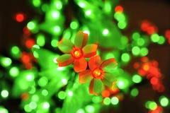 Luces de las flores Foto de archivo libre de regalías