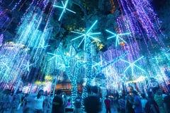 Luces de los días de fiesta de la Navidad Fotografía de archivo