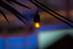 Luces de techo imágenes de archivo libres de regalías