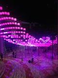 Luces del día de fiesta en invernadero en Nochevieja Fotografía de archivo libre de regalías