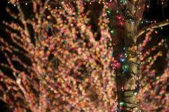 Luces del día de fiesta Fotografía de archivo