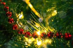 Luces del ` s del Año Nuevo fotos de archivo libres de regalías