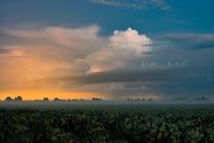 Luces distantes de la tormenta y del invernadero con niebla baja fotografía de archivo libre de regalías