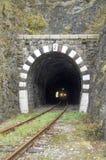 Luces en el tren en túnel de piedra ferroviario Imagen de archivo libre de regalías