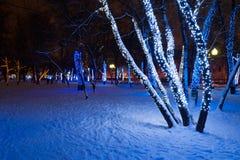 Luces hermosas en árboles Fotos de archivo