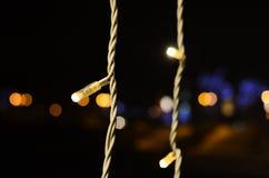 Luces minúsculas, días de la celebración Fotografía de archivo libre de regalías