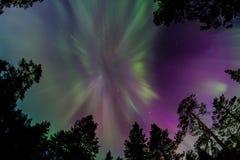 Luces norteñas Imagen de archivo