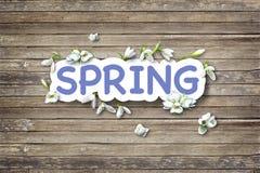 Luces que oscilan de la primavera Fotografía de archivo libre de regalías