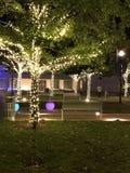 Luces y árboles Imagen de archivo libre de regalías