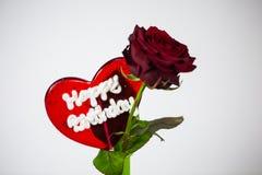 Lucette avec la rose de rouge, fond blanc Image stock