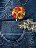 Lucette dans la poche de jeans Photographie stock