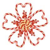 Lucette, fleur présentée avec des sucreries de Noël avec un arc Éléments pour une carte de Noël Illustration d'aquarelle illustration libre de droits