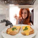 Lucha con una araña Fotos de archivo libres de regalías