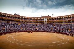 Lucha de Bull en Madrid Fotos de archivo