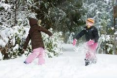 Lucha de la bola de nieve imagen de archivo libre de regalías