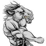 Lucha de la mascota del caballo Imágenes de archivo libres de regalías