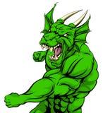 Lucha de la mascota del dragón Fotografía de archivo