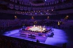 Lucha de participantes en el combate de boxeo WSB Foto de archivo libre de regalías