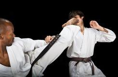 Lucha del karate fotografía de archivo libre de regalías