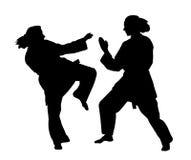 Lucha del karate de las mujeres Fotos de archivo libres de regalías