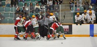 Lucha en un juego de hockey del NCAA Fotografía de archivo libre de regalías