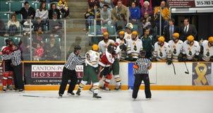 Lucha en un juego de hockey del NCAA Fotos de archivo