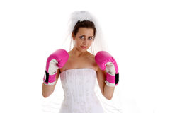Lucha Wedding Imagen de archivo libre de regalías