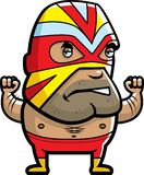 Luchador Royalty Free Stock Image