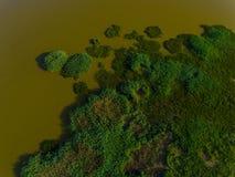 Lucht bosgebied stock afbeeldingen