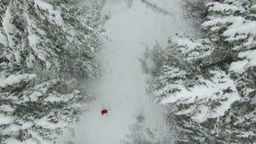 Lucht geschoten de winterbos met vrouw in rood stock video